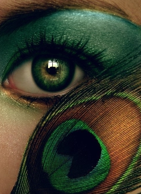 eye, eye shadow, eyeshadow, green, green eyes, peacock feather