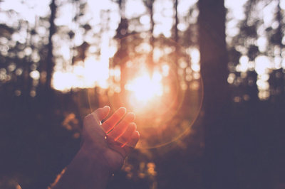 forest, hand, light, photography, sun