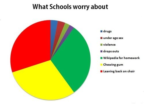 funny, pie chart, school, text, true