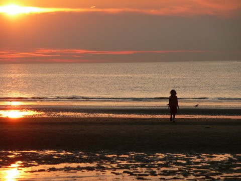 girl, strand, sun, sunset