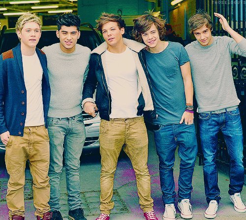harry styles, liam, louis, niall, one direction