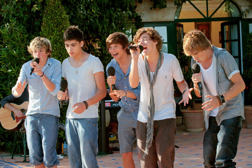 harry styles, liam payne, louis tomlinson, niall horan, one direction, torn, x factor, zayn malik