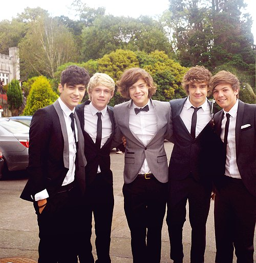 harry styles, liam payne, louis tomlinson, niall horan, one direction
