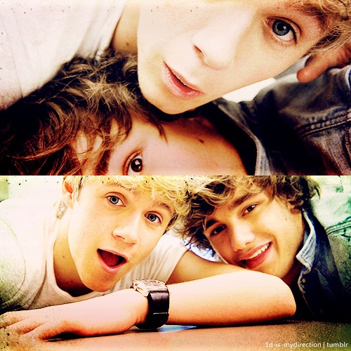 liam payne, niall horan, one direction