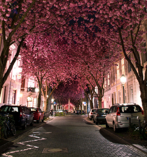night, pretty, street