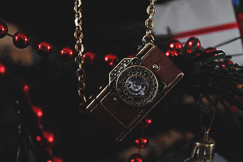 accessories, camera, christmas tree, necklace, photography