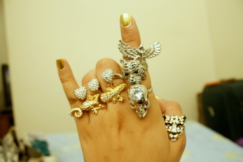 acessorio, aneis, bird, fofo, girl, heart, love, ring, rings, sweet, tiger
