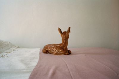 adorable, animal, animals, baby, bed, cute, deer, love, sweet