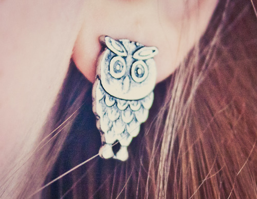 adorable, cute, earrings, fashion, jewelry