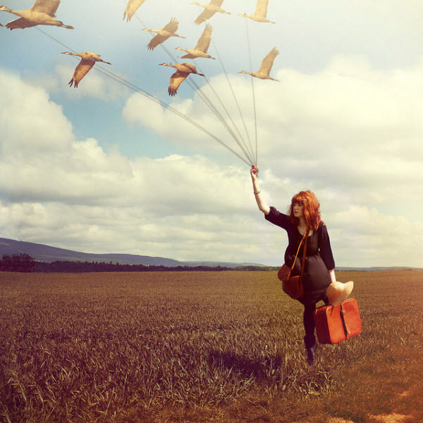 amazing, birds, dream, fashion, fly, girl, old, packme, vintage
