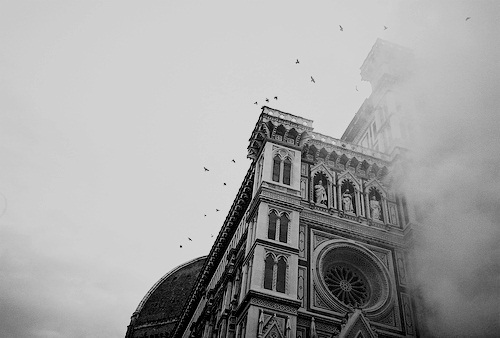architecture, b&w, beautiful, bird, birds, black & white, black and white, cute, florence, landscape, nature, old, photo, photography, place, sky, vintage