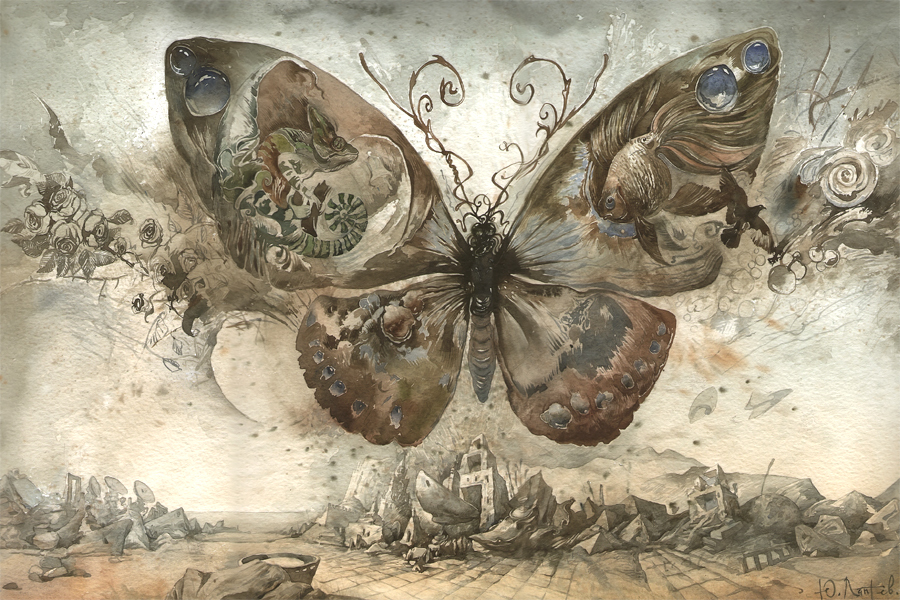 art, butterfly, illustration