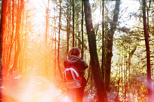 autumn, faded, fall, forest, girl, hiking, hipster, photography, warm, woods