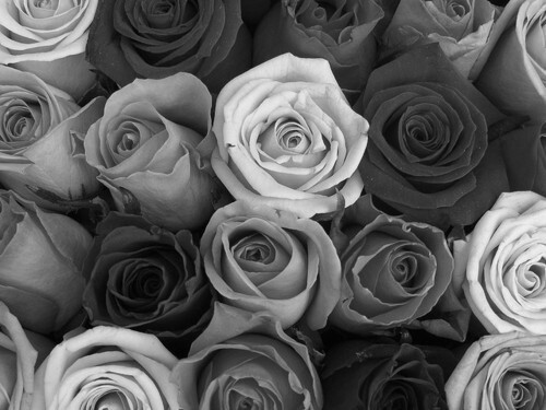 Background Photos Tumblr Black And White Tumblr Backgrounds Black And