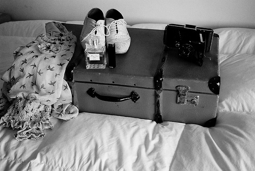 b&w, bird, birds, black & white, black and white, clothe, cute, oxford, photo, photography, shoes, travel