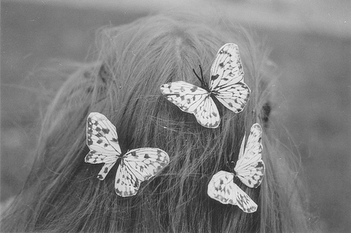 beautiful, beauty, black and white, butterflies, butterfly