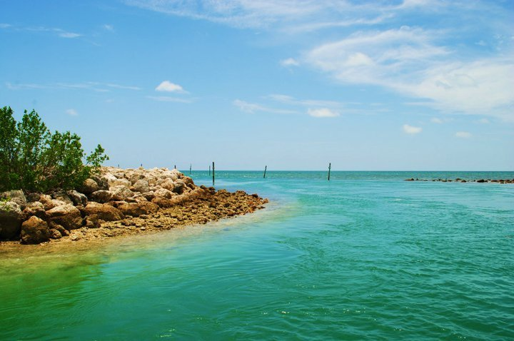 beautiful, florida keys, keys, ocean, photography