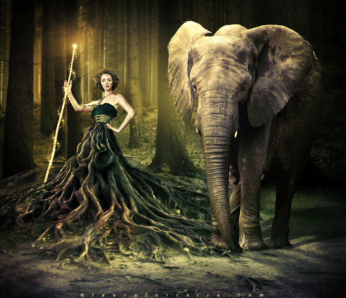 beauty, elephant, forest, girl, power