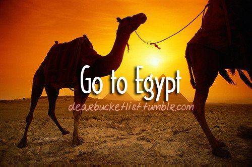 before i die, bucket list, camel, dearbucketlist, desert