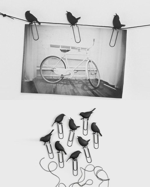 bird, birds, black, black and white, creative