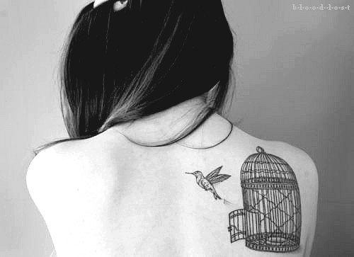 bird, cool, cute, photography, tattoo
