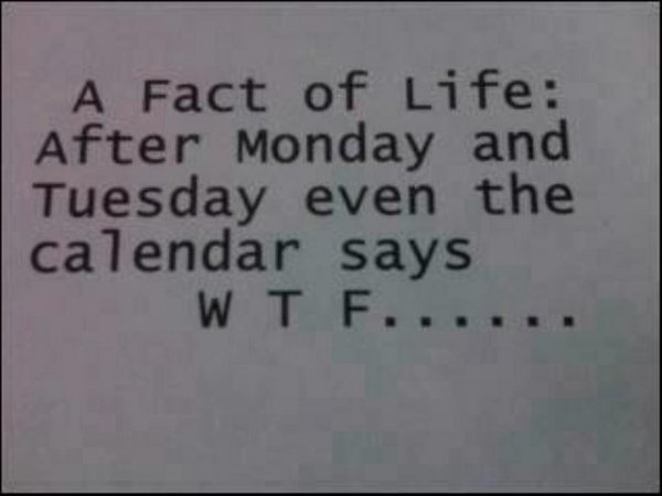 black and white, calendar, facts, funny, images