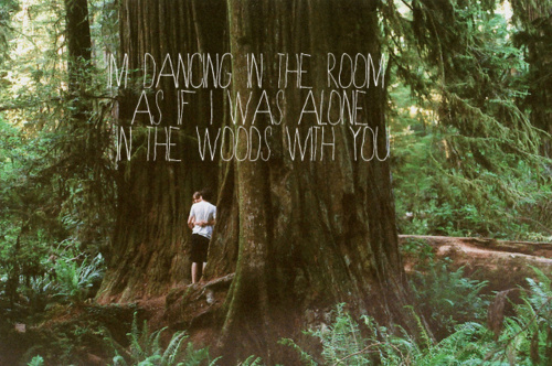 boy, couple, forest, girl, lyrics, nature, text, woods, words