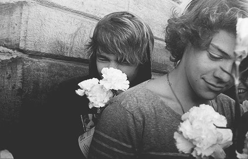 boy, cute, fan, harry styles, liam pain, love, love harry, one direction, smile