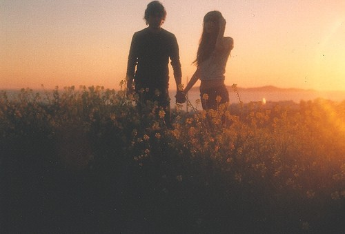 boy, flowers, hold hands, love, sunset