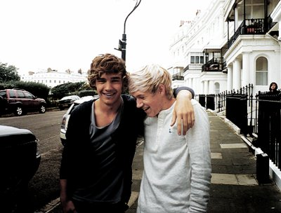 boys, cute, firends, liam payne, niall horan