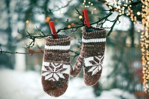 branch, brown, christmas lights, cute, gloves