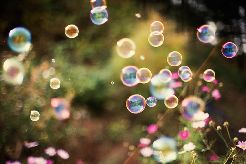 bubble, bubbles, flower, flowers, forest
