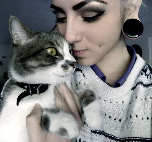 cat, cheek piercing, cheek piercings, cheeks, eyeliner, eyeshadow, makeup, plugs, stretched ears, yellow eye