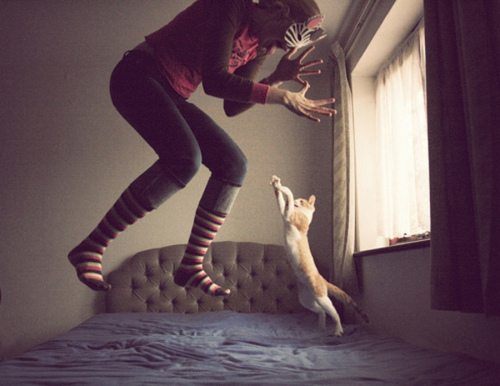 cat, girl, photography