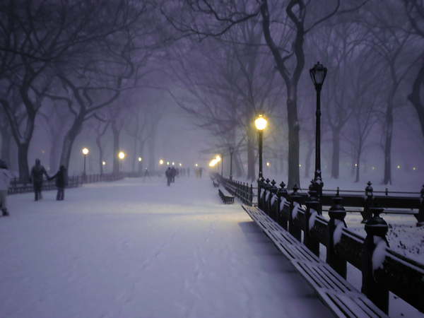 central park, new york, scenery, snow, winter