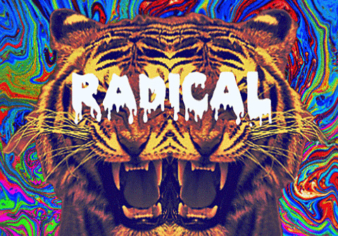colourful, high, lion, pattern, patterns, radical, weed