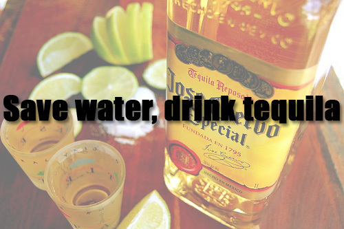cuervo, drink, drinks, fun, jose cuervo
