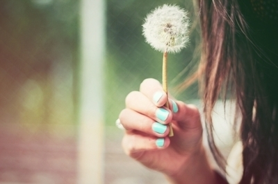 dandelion, girl, lovely