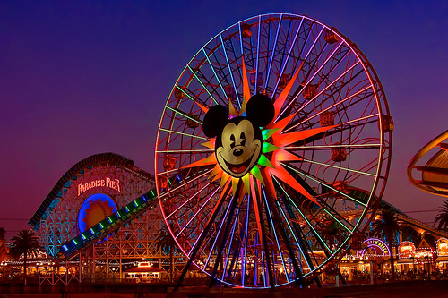 dark, disney, lights, nature, rollercoaster, water, wheel