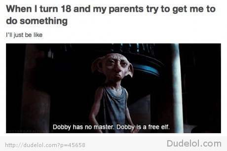 dobby, elf, free, funny, harry potter