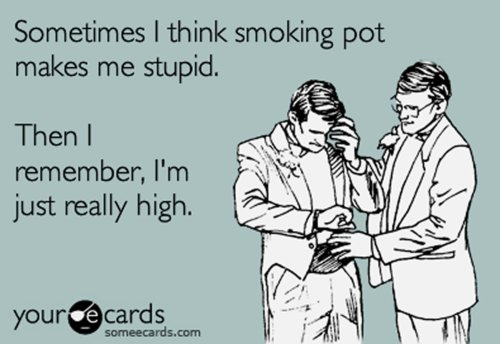 ecards, funny, high, pot