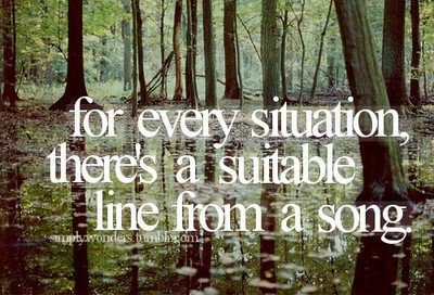 forest, friends text, photography, quote, situtation, song, swamp, text
