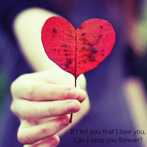 heart, leaf, love, photography, quote, words